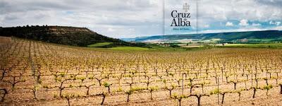 Bodega Cruz de Alba