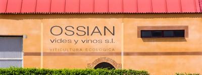 Bodega Ossian