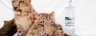 Bodega Snow Leopard