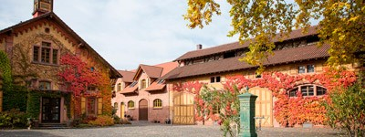 Bodega Weingut Villa Wolf
